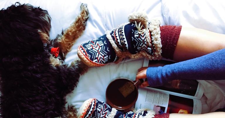 超小型犬から大型犬まで豊富なサイズ掲載『かわいい犬の手編み服』